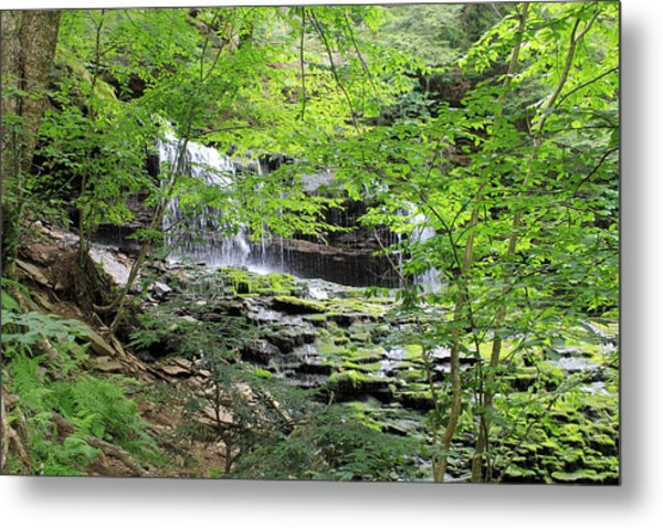 Waterfall Ricketts Glen State Park Pa Metal Print