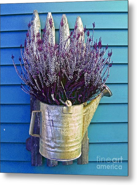 Watering Can On The Blue Wall Metal Print