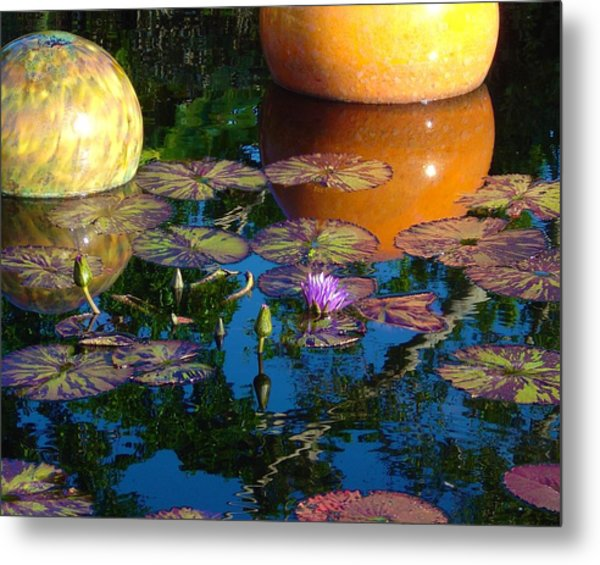 Waterlily Reflections Metal Print