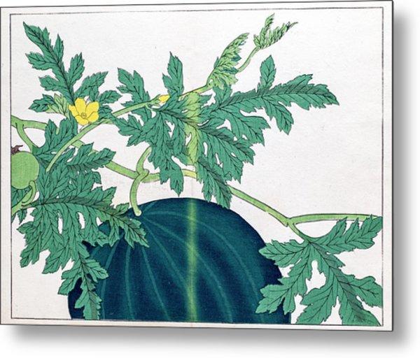 Watermelon Japanese Woodblock Print Metal Print