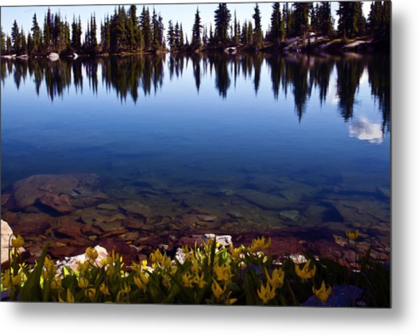 Water's Edge Metal Print by Randolph Fritz