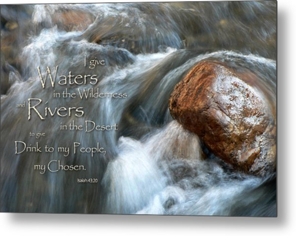 Waters In The Wilderness Metal Print