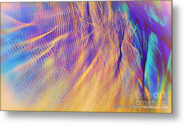 Wave Metal Print by JCYoung MacroXscape