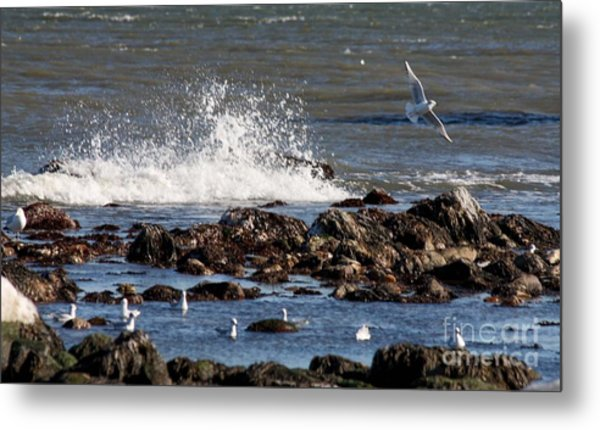 Waves Wind And Whitecaps Metal Print