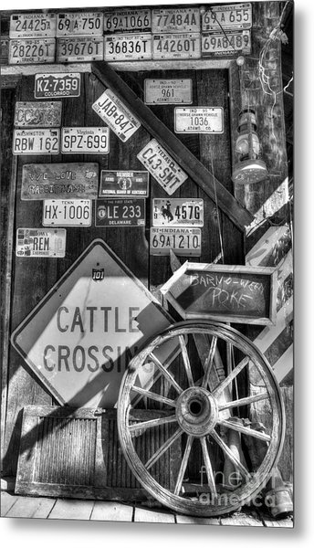 We Love Rabbit Hash Bw Metal Print by Mel Steinhauer