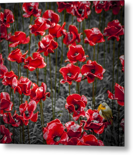 We Will Remember Them Metal Print by S J Bryant