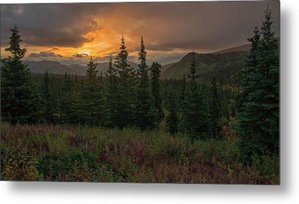 Metal Print featuring the photograph Weather The Storm by Darlene Bushue