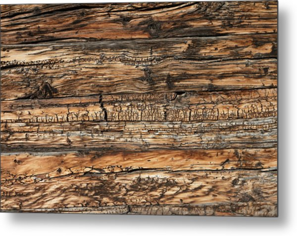 Weathered Wood 5 Metal Print by Charles Lupica
