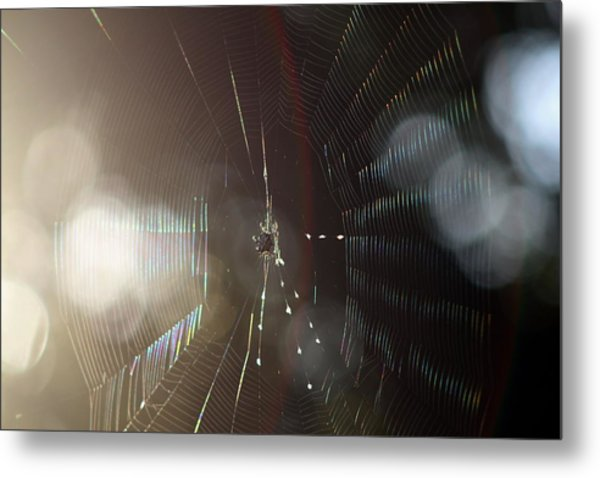 Web Of Flares Metal Print