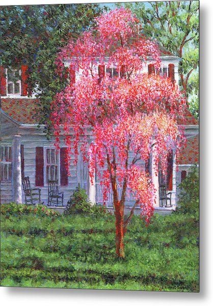 Weeping Cherry By The Veranda Metal Print