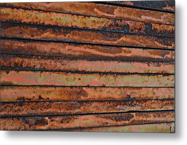 Weighted Metal Print by Kelly Kitchens
