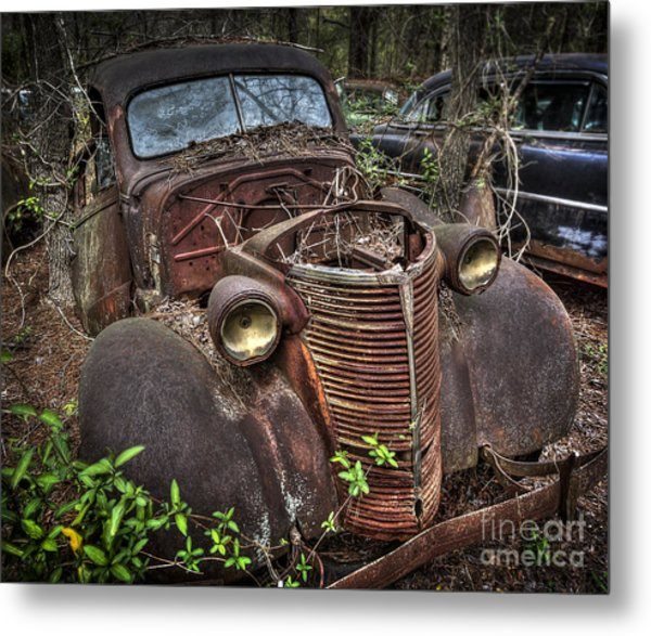 Well Grounded Metal Print