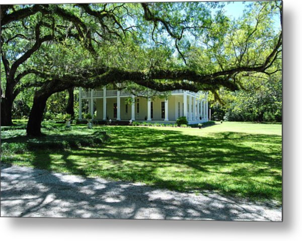 Wesley House And The Oak Metal Print by Michele Kaiser