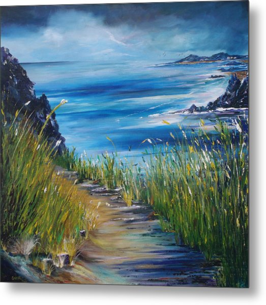 West Coast Of Ireland Metal Print
