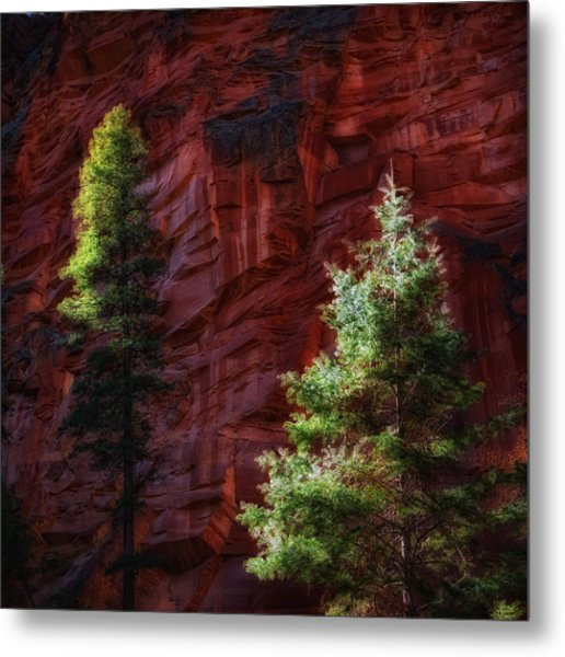 West Fork Rock Face Number Three Metal Print