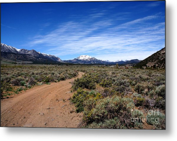 West Of The Sierra Nevada  Metal Print