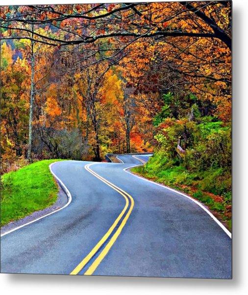 West Virginia Curves 2 Metal Print