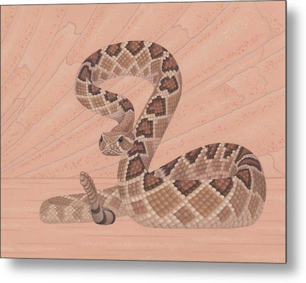 Western Diamondback Rattlesnake Metal Print by Nathan Marcy