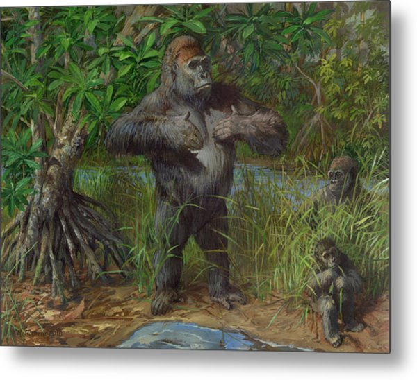 Western Lowland Gorilla Metal Print by ACE Coinage painting by Michael Rothman
