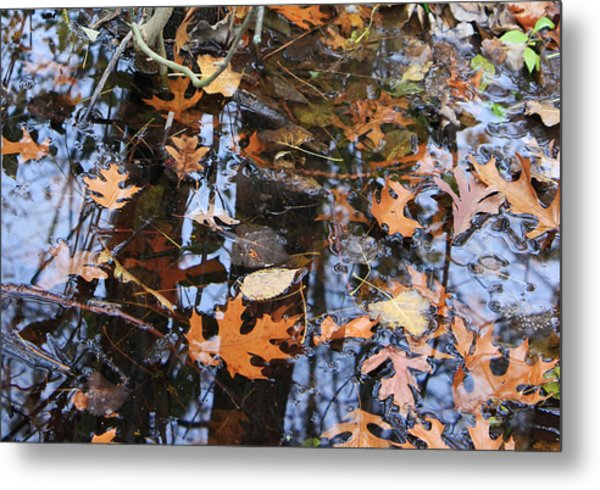 Wetland Reflections 12 Metal Print by Mary Bedy