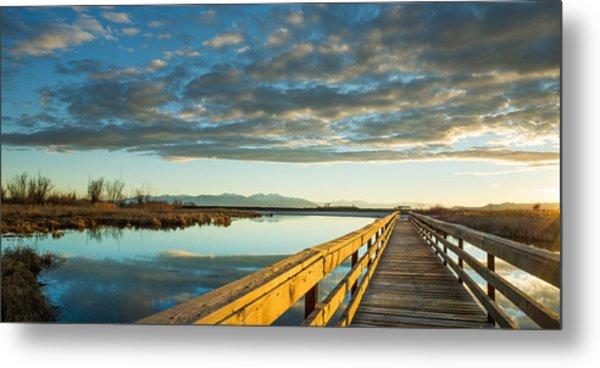 Wetland Wooden Path Metal Print