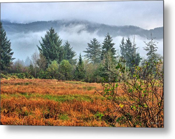 Wetlands In The Fall Metal Print