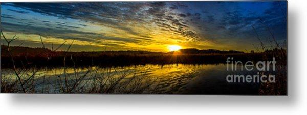 Wetlands Sunset Metal Print
