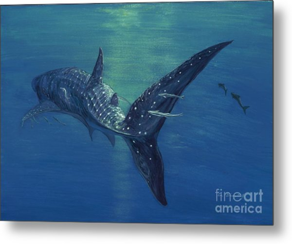 Whale Shark Metal Print