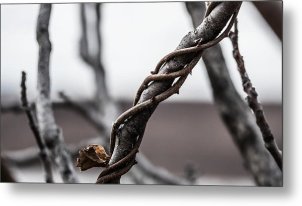 What A Twist Metal Print