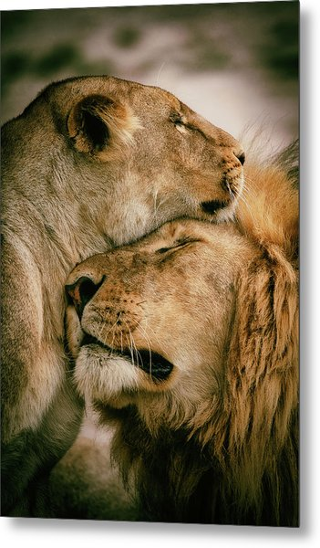 What Is Love Metal Print by Mohammed Alnaser