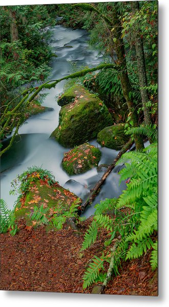 Whatcom Falls 1 Metal Print