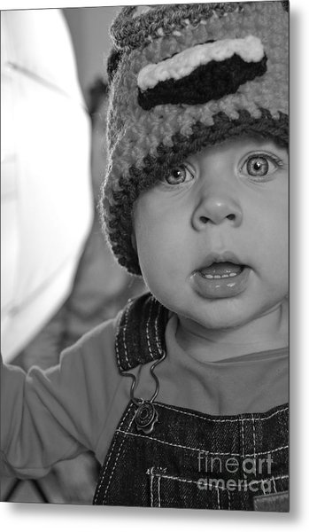 What's That Metal Print by Baywest Imaging