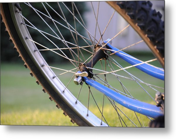 Metal Print featuring the photograph Wheeling by Susie Rieple