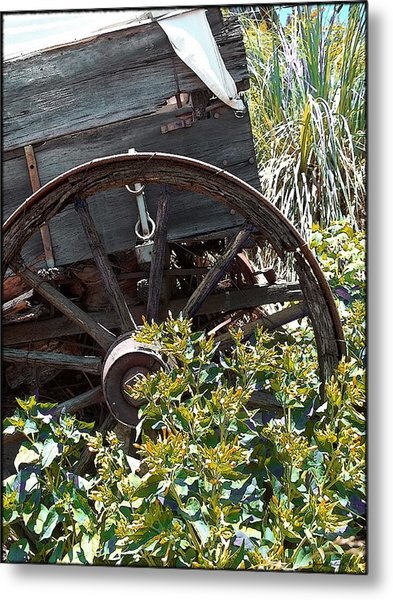Wheels In The Garden Metal Print