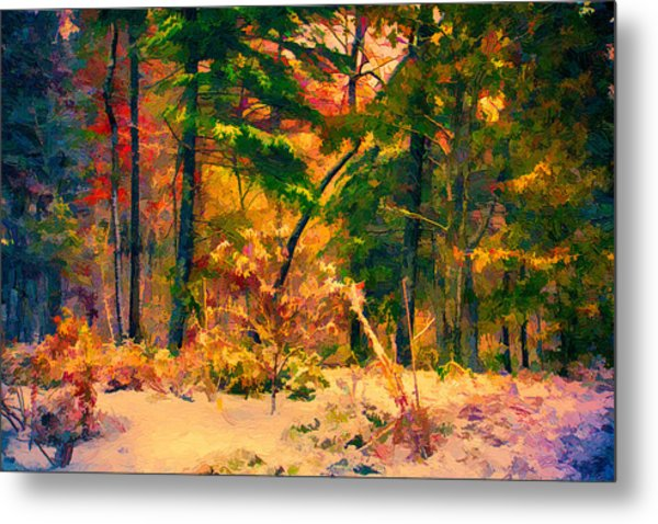 When Fall Becomes Winter Metal Print