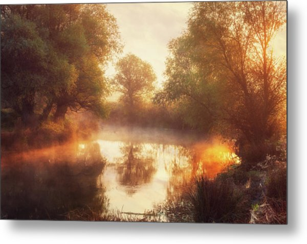 When Nature Paints With Light II Metal Print