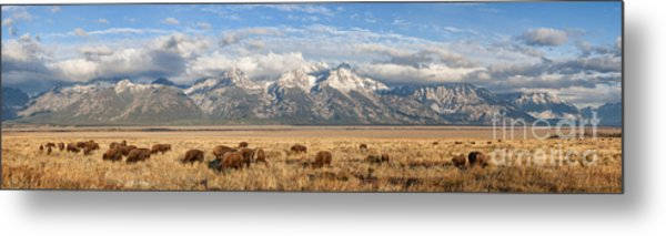 Where The Buffalo Roam 2 Metal Print