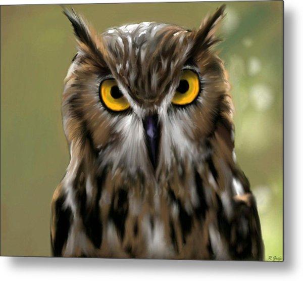 The Gaze Of An Owl - Where's My Dinner?  Metal Print