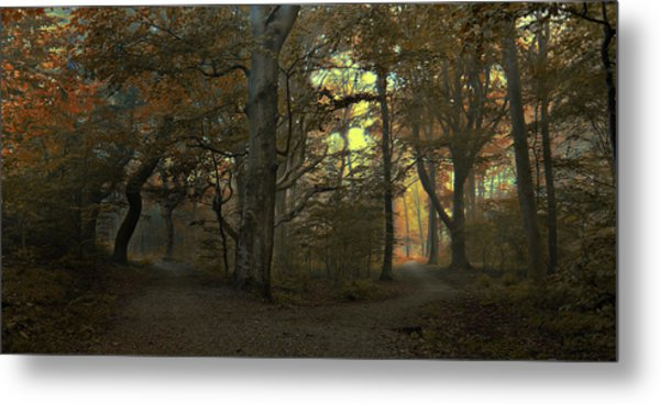 Which Path Metal Print