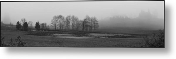 Whidbey Island Meadow In Fog Metal Print