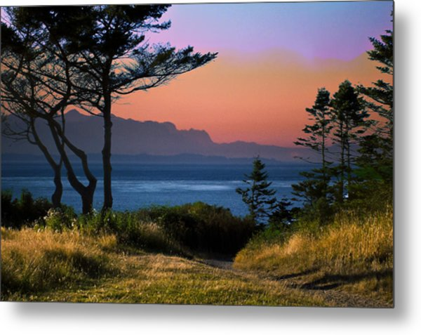 Whidbey Island Sundown Metal Print