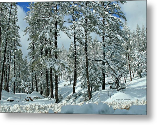 Whispering Snow Metal Print
