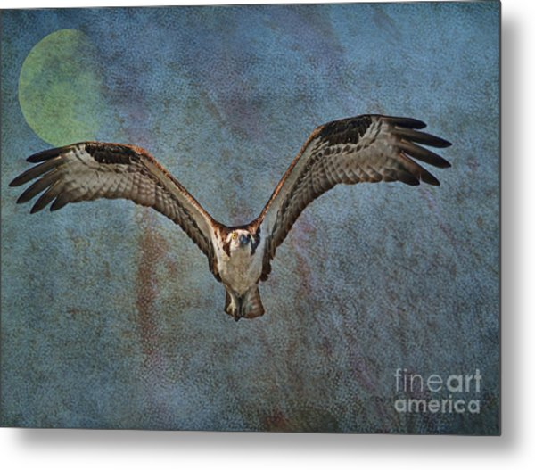 Whispering To The Moon Metal Print
