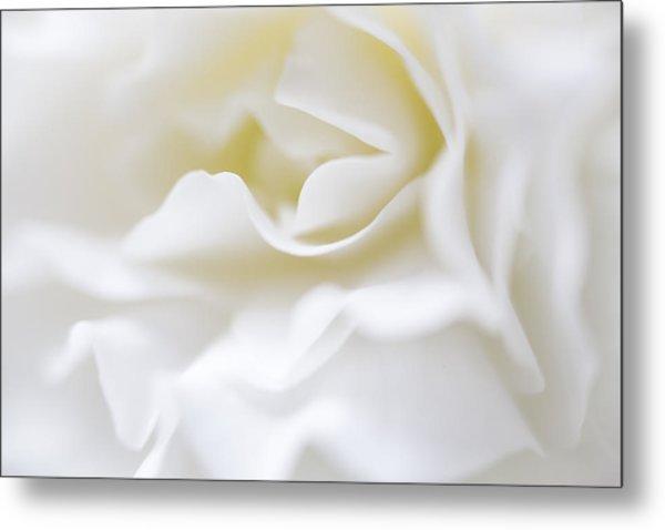White Begonia Petals Metal Print