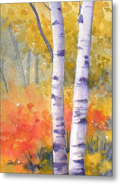 White Birches In Autumn Metal Print