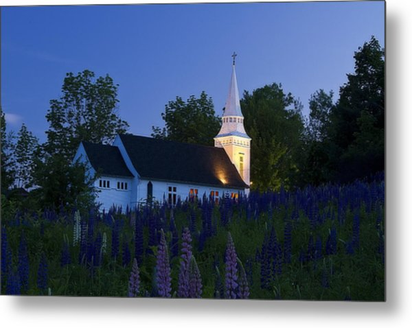 White Church At Dusk In A Field Of Lupines Metal Print