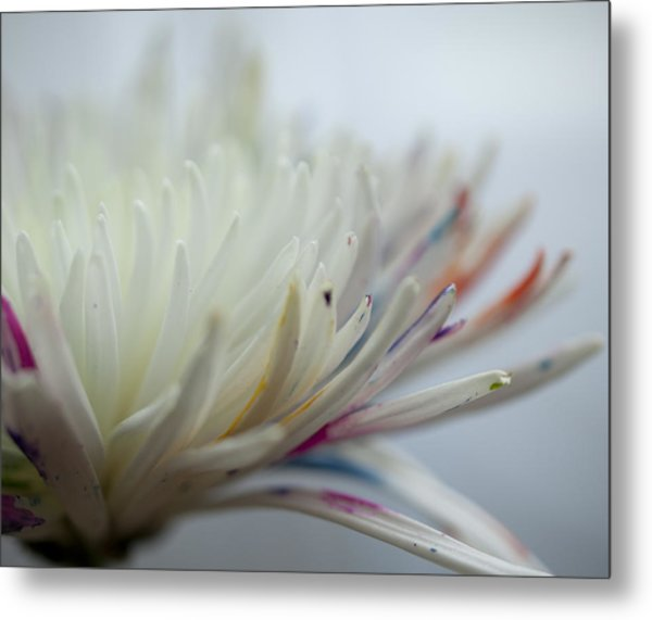 White Colors 2 Metal Print