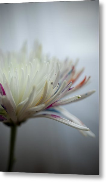 White Colors Metal Print