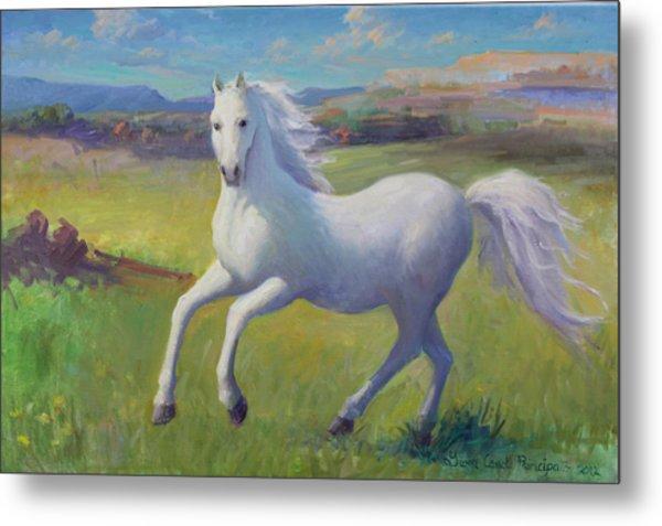 White Horse Metal Print by Gwen Carroll