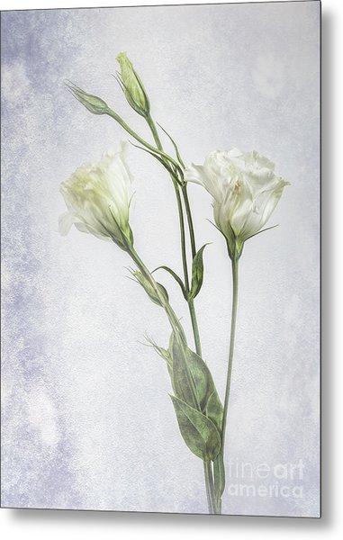 White Lisianthus Flowers Metal Print